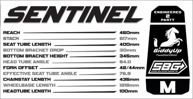 Transition Sentinel Geometry