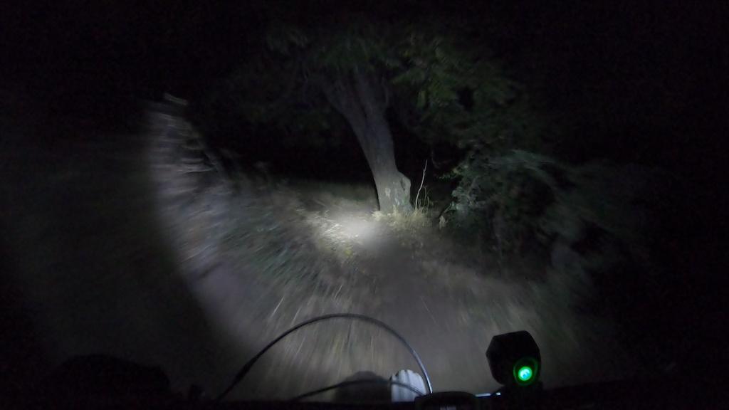 September 6-12, 2019 Weekly Ride Stories-tree-turn.jpg