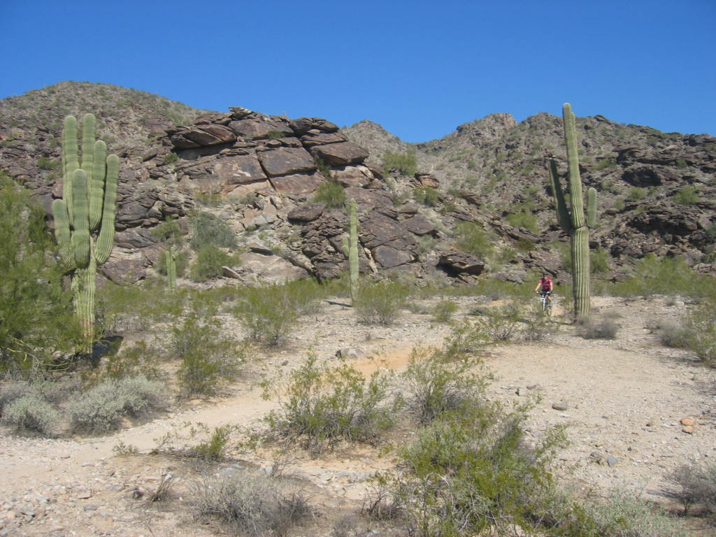 our winter ride-trip-arizona-feb-2011-032.jpg
