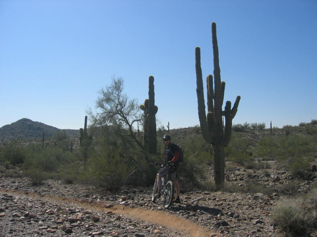 our winter ride-trip-arizona-feb-2011-034.jpg