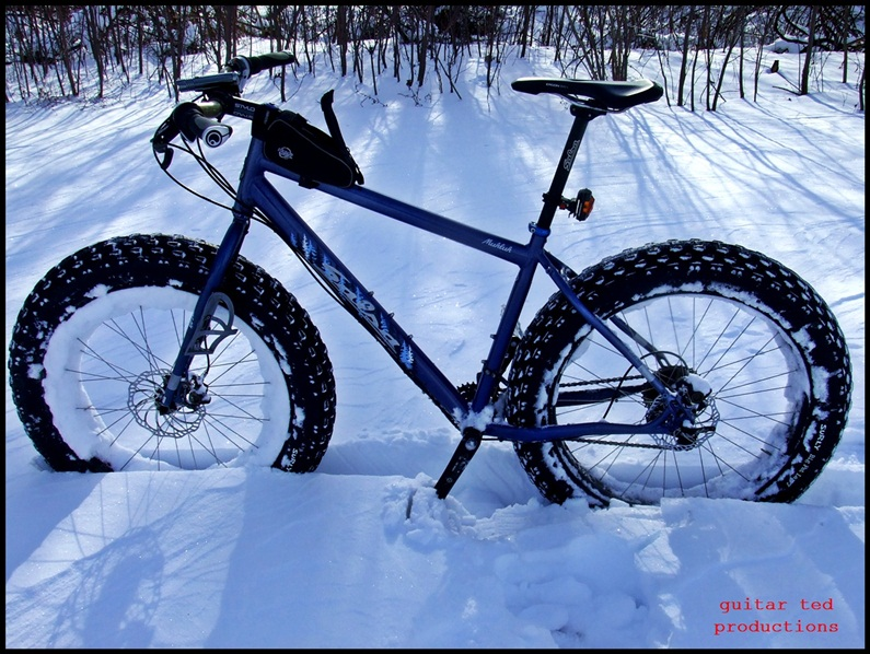 Shouldn't we be seeing Mukluk and Beargrease pics?-triple-d-training-12-021.jpg