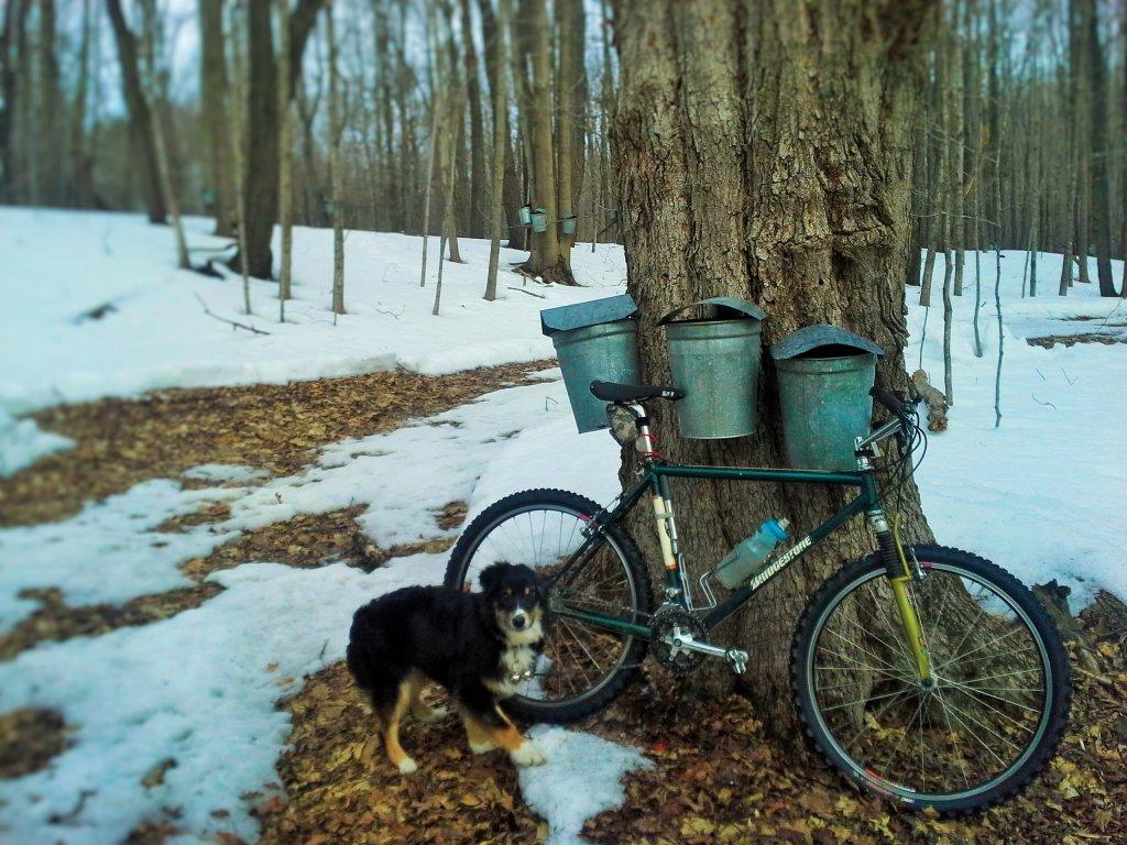 Trail Pics-trix-spring-15.jpg
