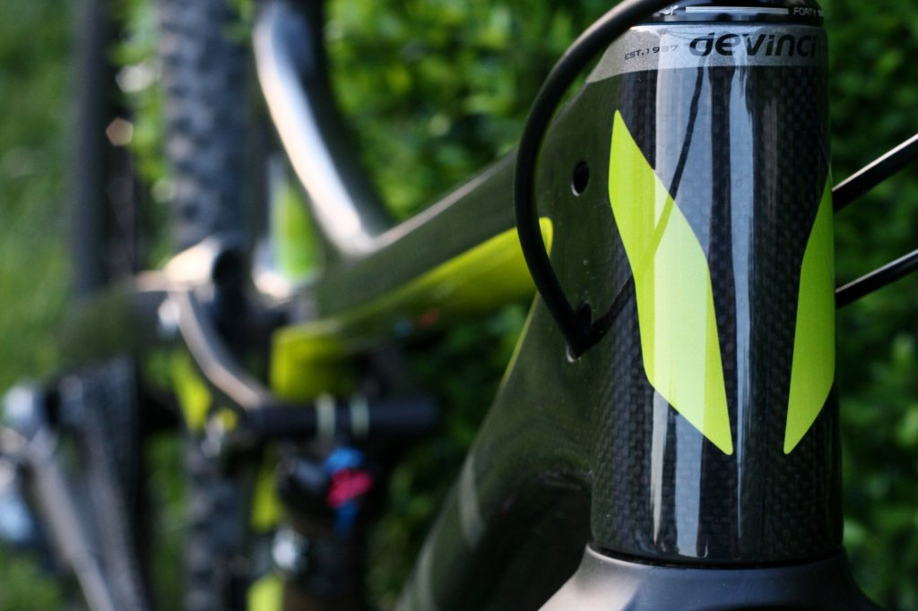 Show off your Devinci's!-troy8-40.jpg