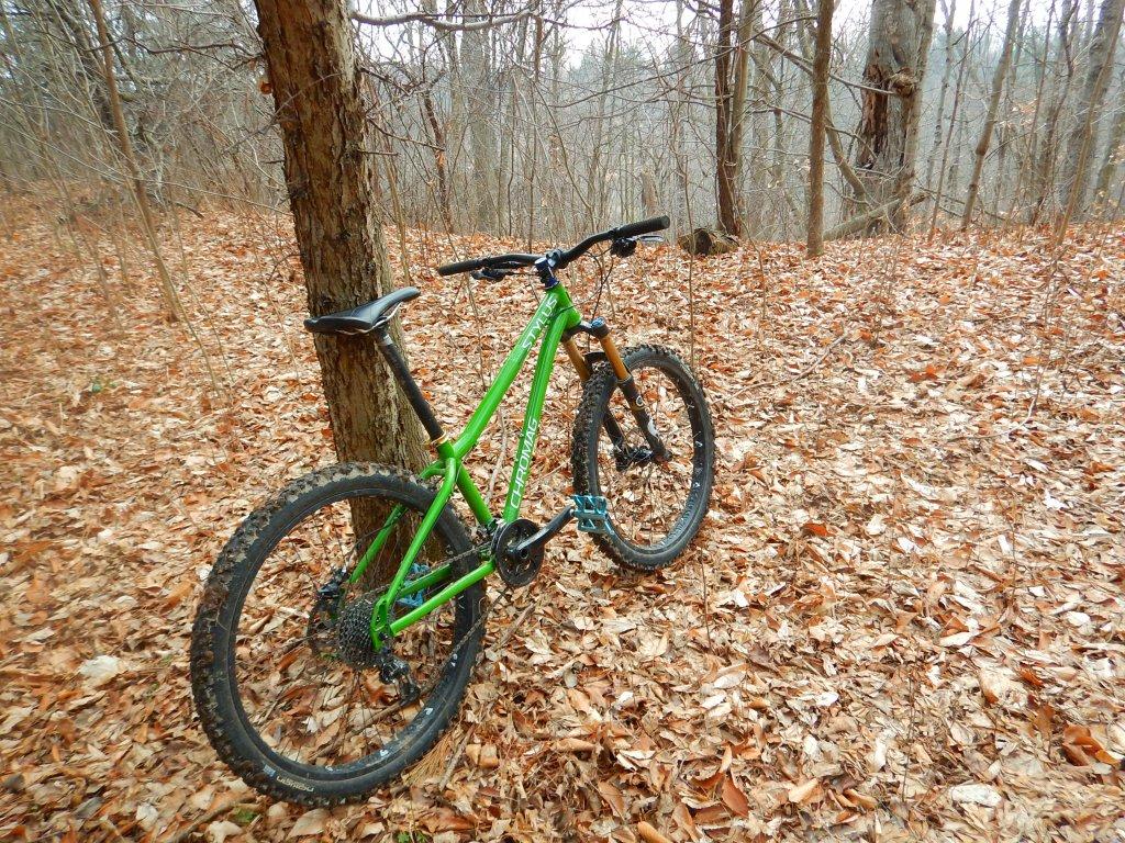 Local Trail Rides-trujbaf.jpg