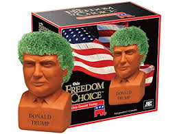 Name:  Trump Chia.jpg