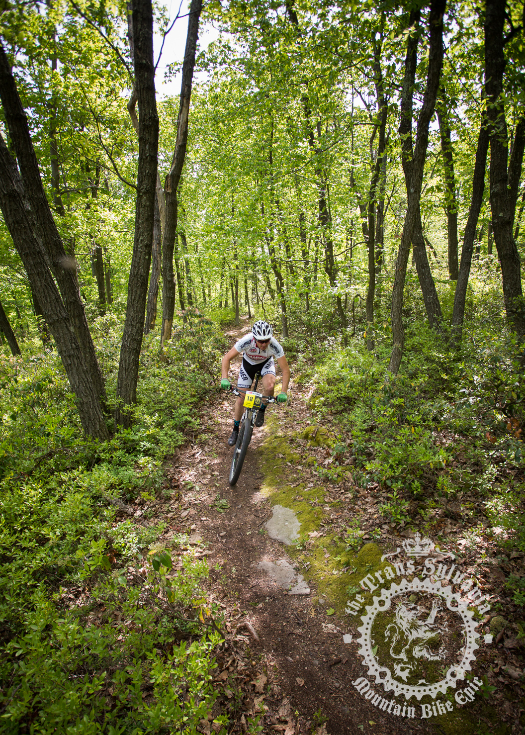 Trans-Sylvania Mountain Bike Epic Stage 2