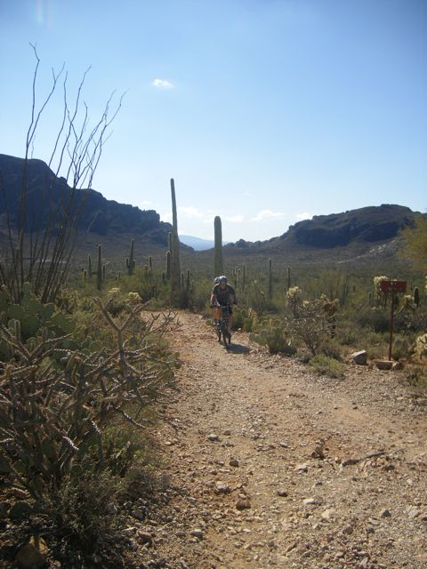 Neat places you have ridden your tandem, please add photos if you have them-tucson-2011-157.jpg