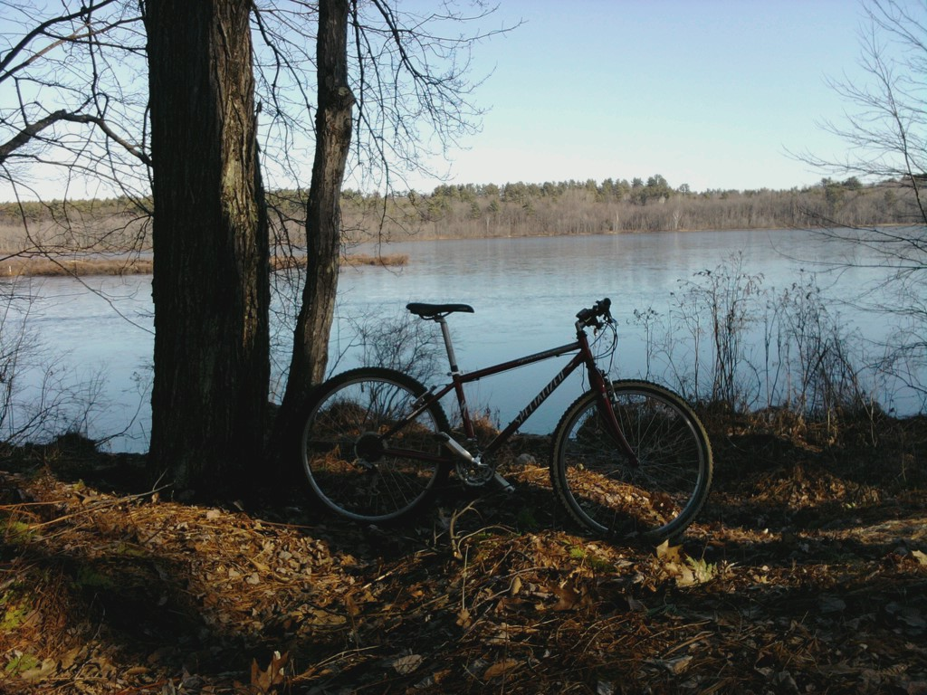 trail condition this weekend.....-turkey-pond.jpg