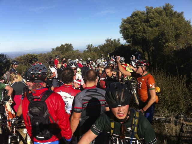 Los Gatos Turkey ride pics-turkeycrowd2.jpg