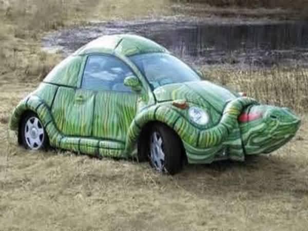 I like turtles-turtle-car.jpg