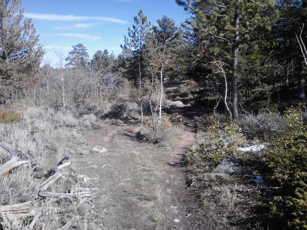 Non-motorized Trail Passion (trail damage by motorized vehicles)-twinmtn.jpg