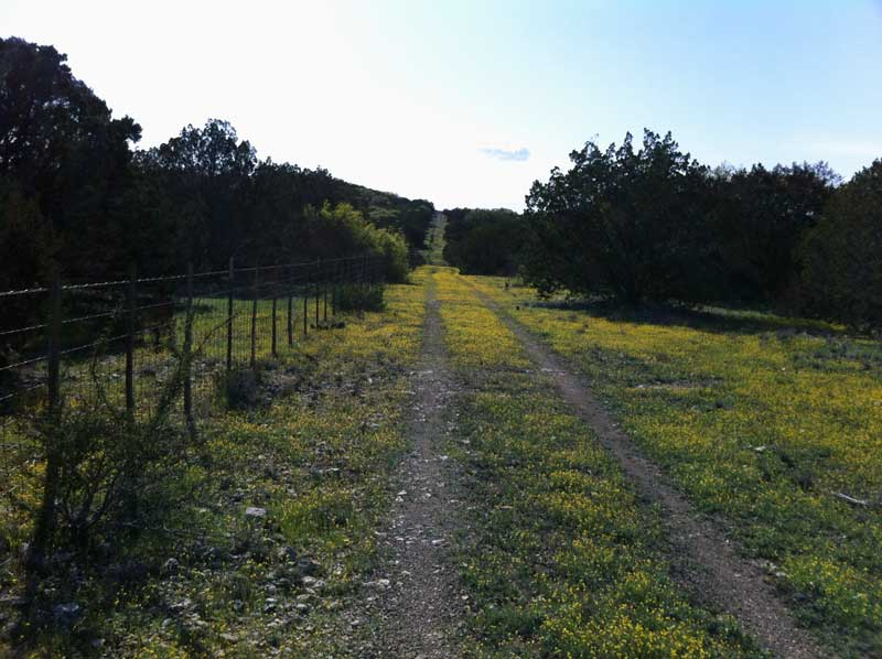 South Llano River State Park - Junction, TX-two-track.jpg