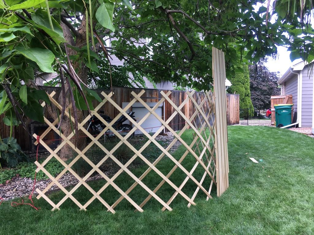 Anyone own a yurt?-twowalls.jpg