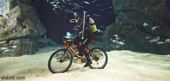 Catalina Gran Fondo?-underwaterbike.jpg