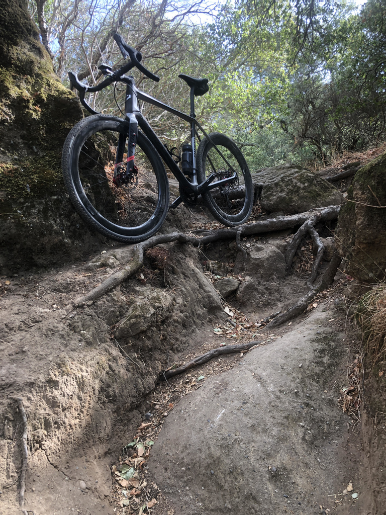 Post Your Gravel Bike Pictures-unnamed-1-.jpg
