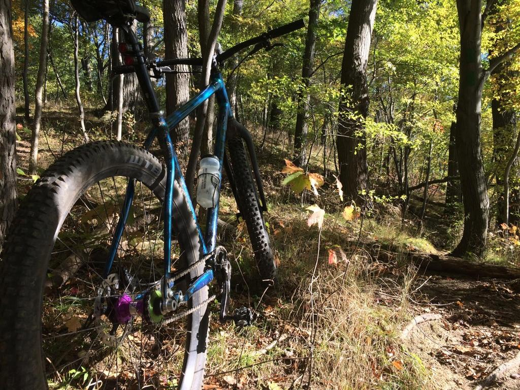 What can you do with a fully rigid 29er XC bike?-unnamed-5-.jpg