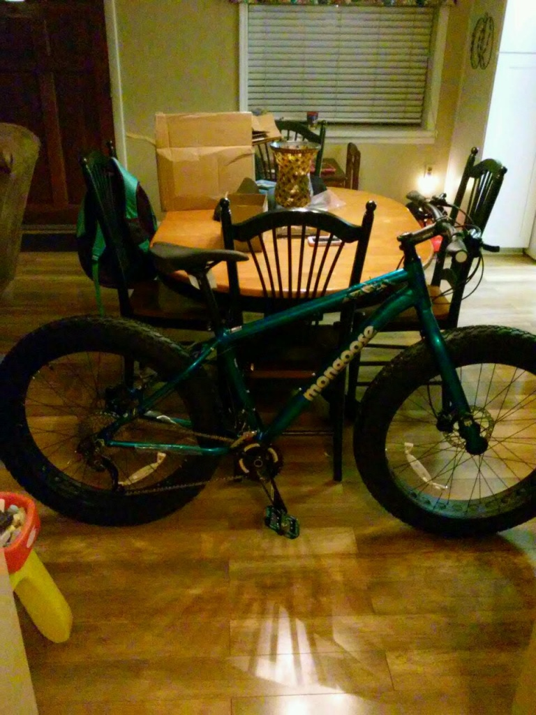 Argus:  A fat bike for the masses? Review & Assembly-unnamed.jpg