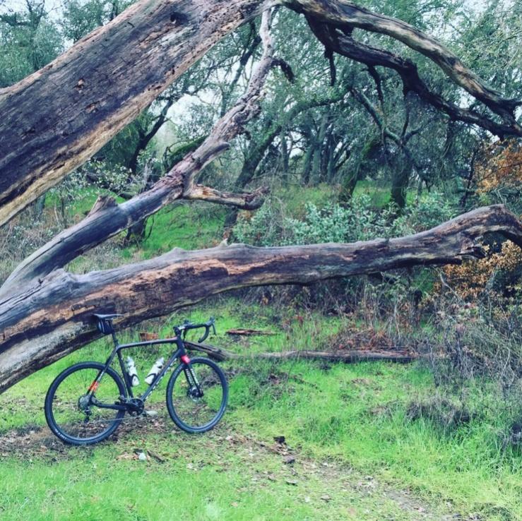 Cross Bikes on Singletrack - Post Your Photos-untitled.jpg