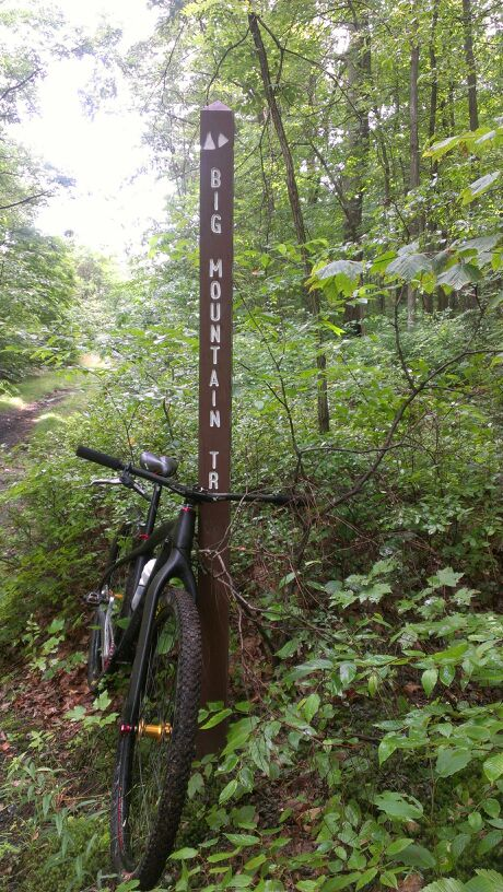 Bike + trail marker pics-uploadfromtaptalk1343701075822.jpg