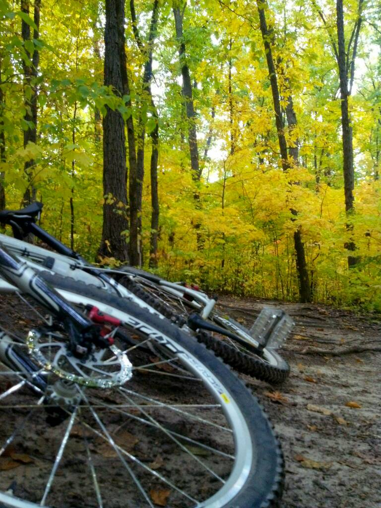 What did You do today on your mountain bike?-uploadfromtaptalk1349218049742.jpg