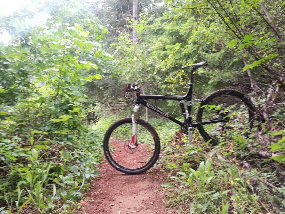 Ideal Xc Race Trail Bike Mtbr Com