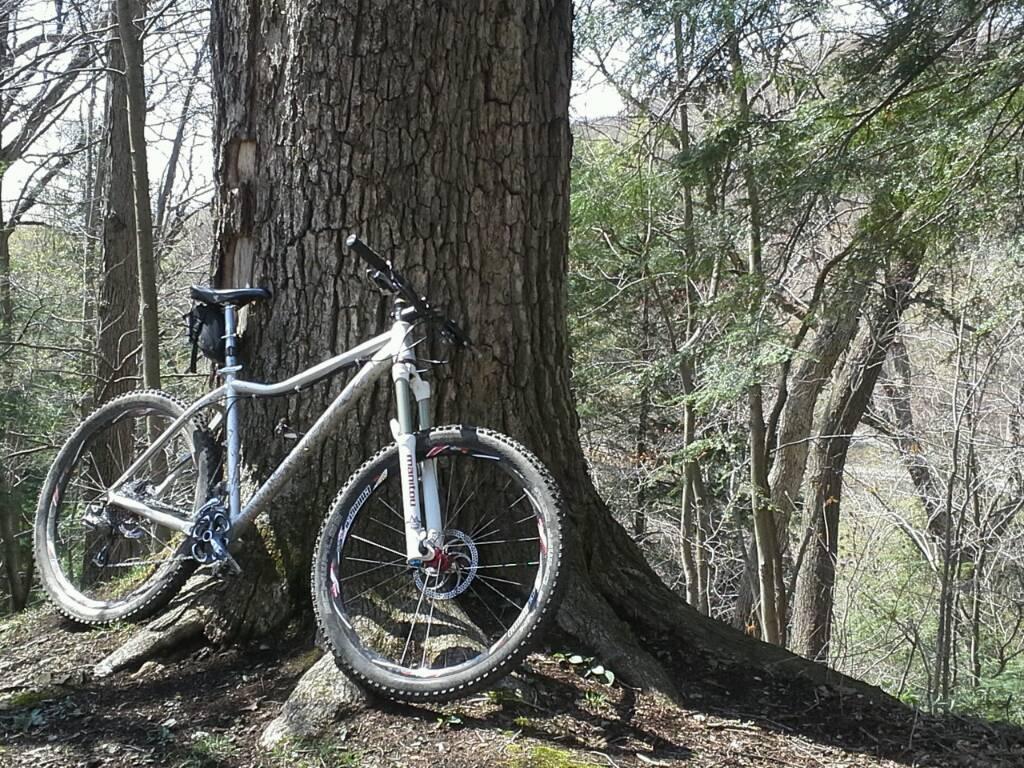 Anyone put 650b wheels on a 29er?-uploadfromtaptalk1366917433740.jpg