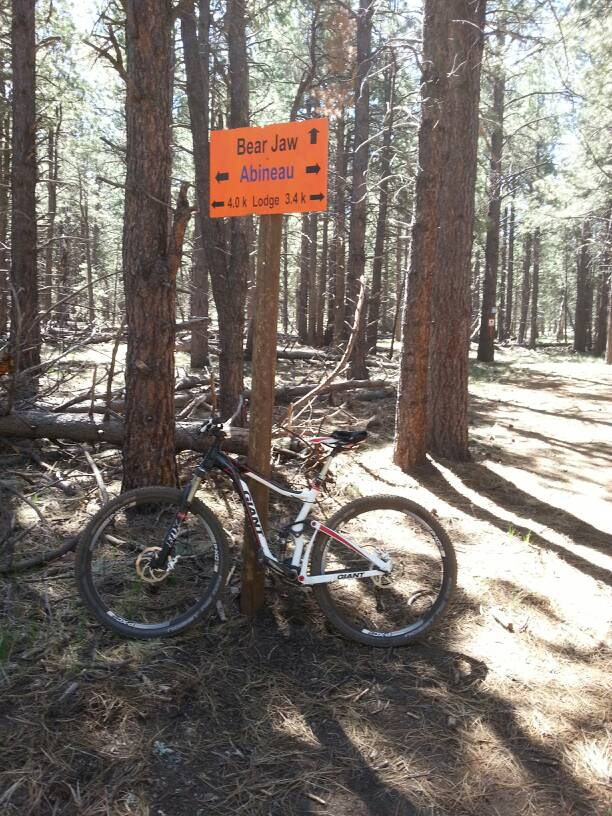 Bike + trail marker pics-uploadfromtaptalk1370756441797.jpg