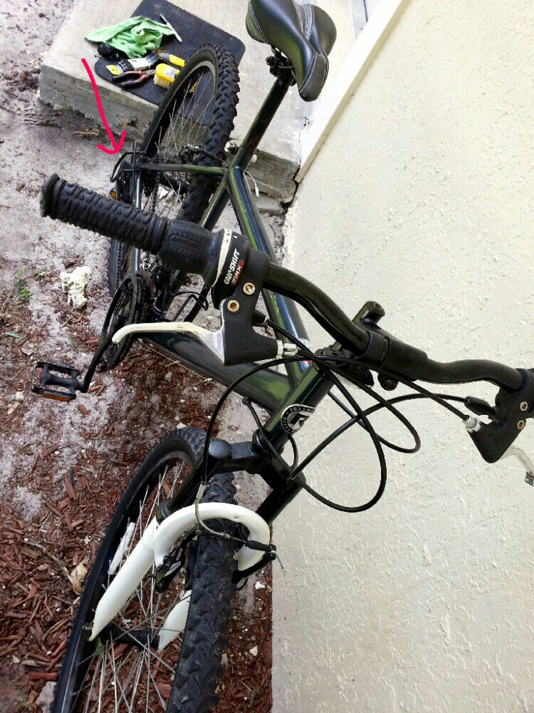 Does anyone use a derailleur protector?-uploadfromtaptalk1372904397900.jpg