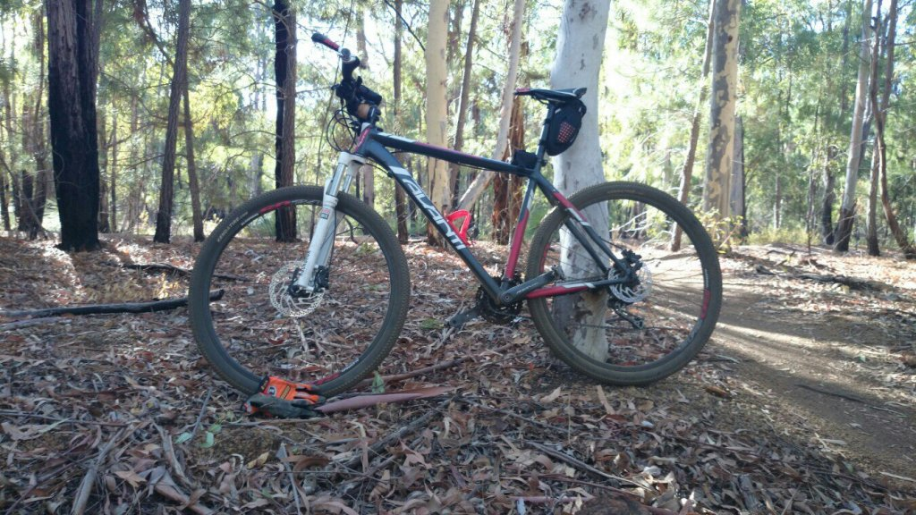 What did You do today on your mountain bike?-uploadfromtaptalk1394939461390.jpg