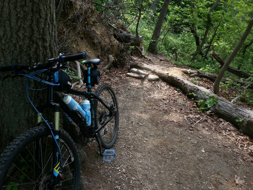 What did You do today on your mountain bike?-uploadfromtaptalk1400715838785.jpg
