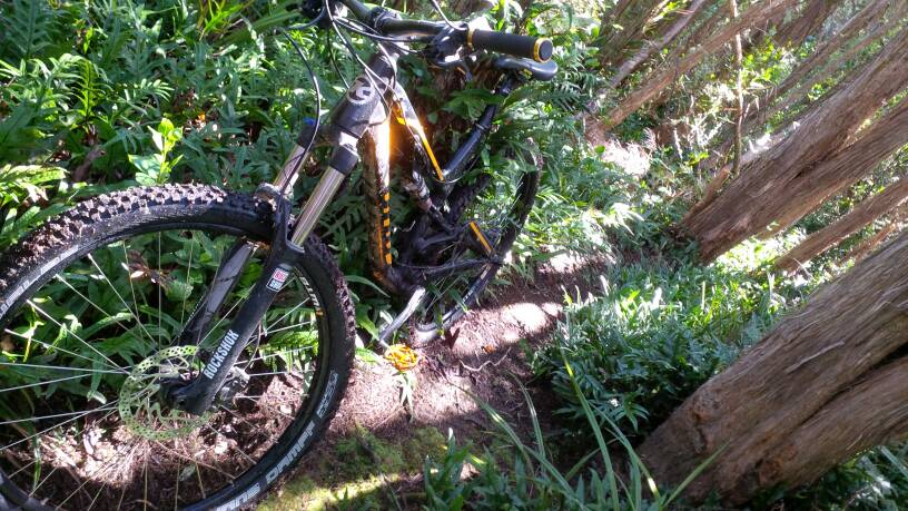 What did You do today on your mountain bike?-uploadfromtaptalk1413677864482.jpg