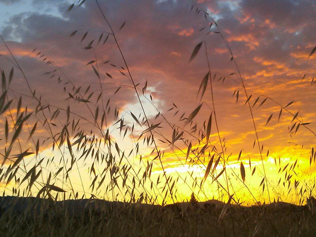 Sunrise or sunset gallery-uploadfromtaptalk1428501535646.jpg