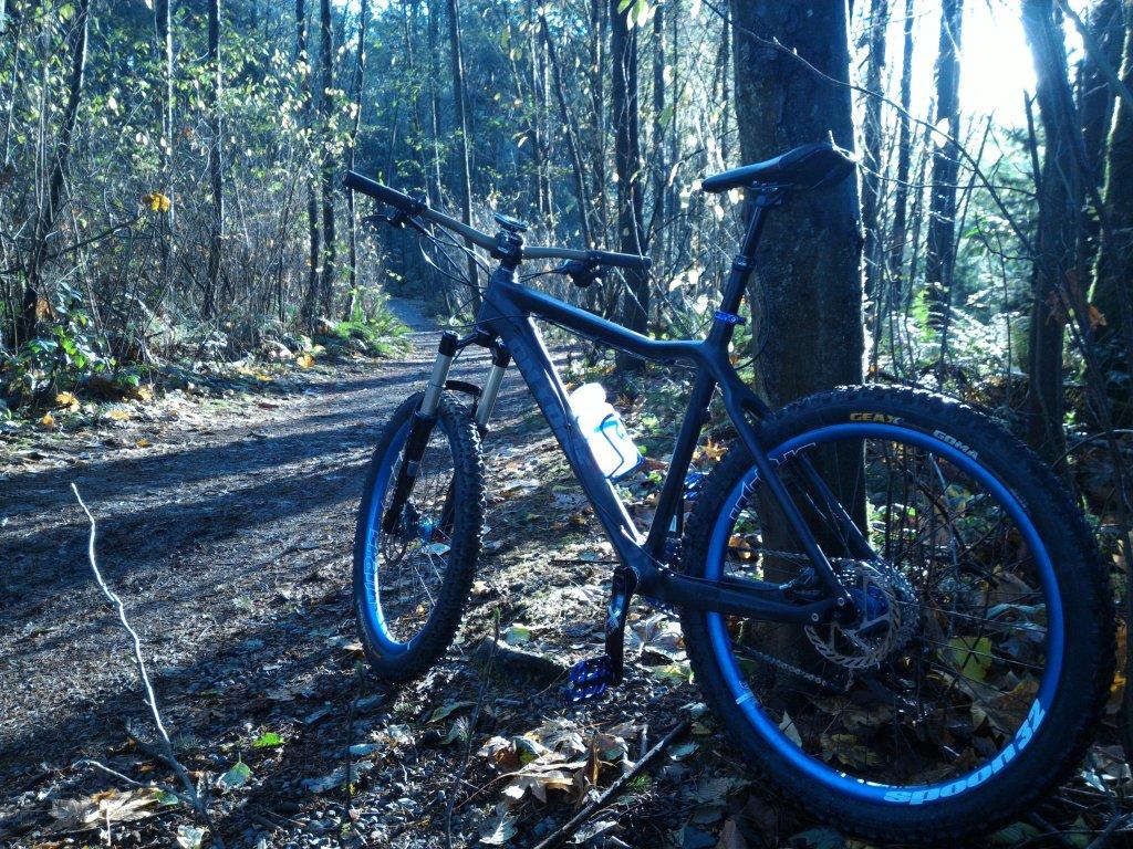On One Bike pictures......-uploadfromtaptalk1447634992334.jpg
