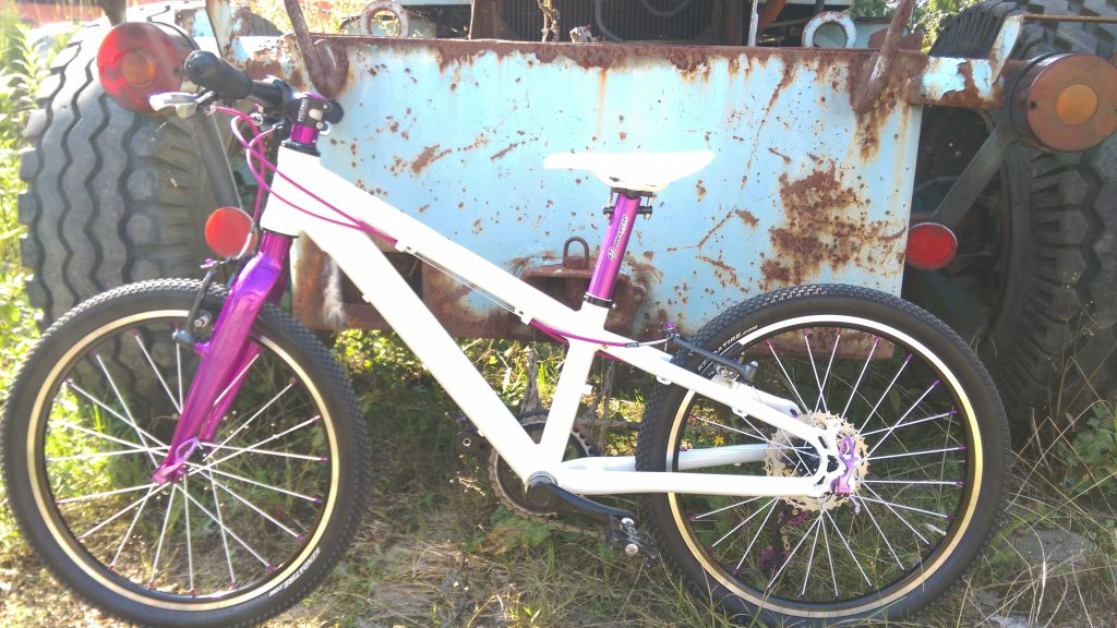 20 inch Mtb from Tuning Pedals-uploadfromtaptalk1448998802156.jpg