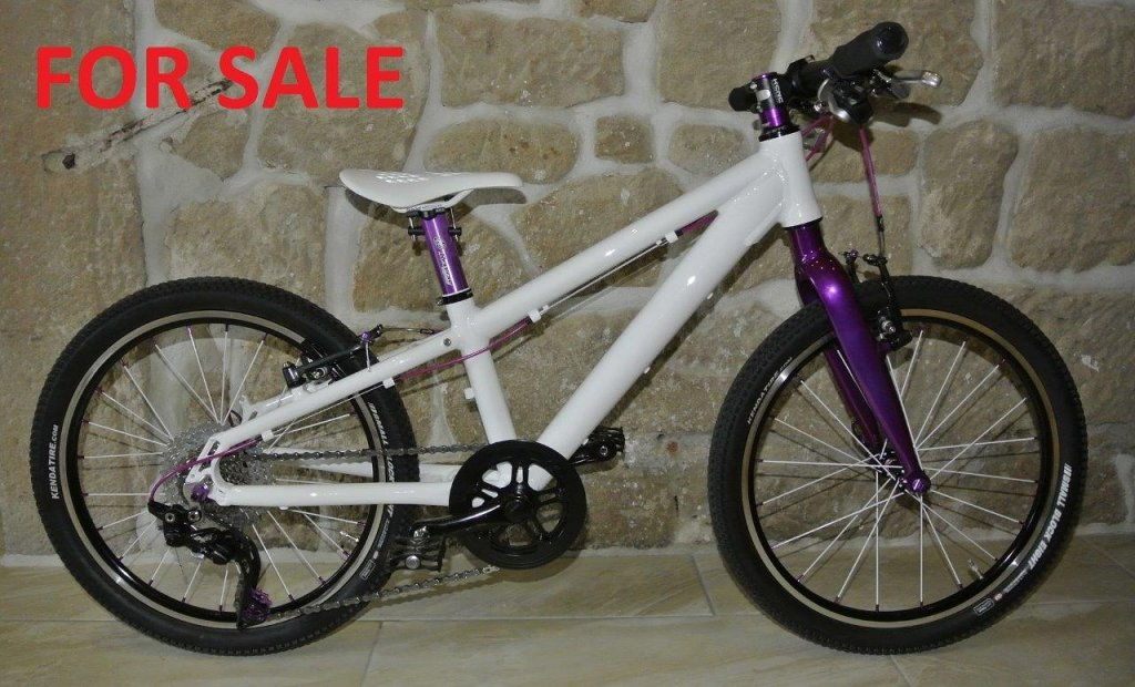 20 inch Mtb from Tuning Pedals-uploadfromtaptalk1448998953128.jpg