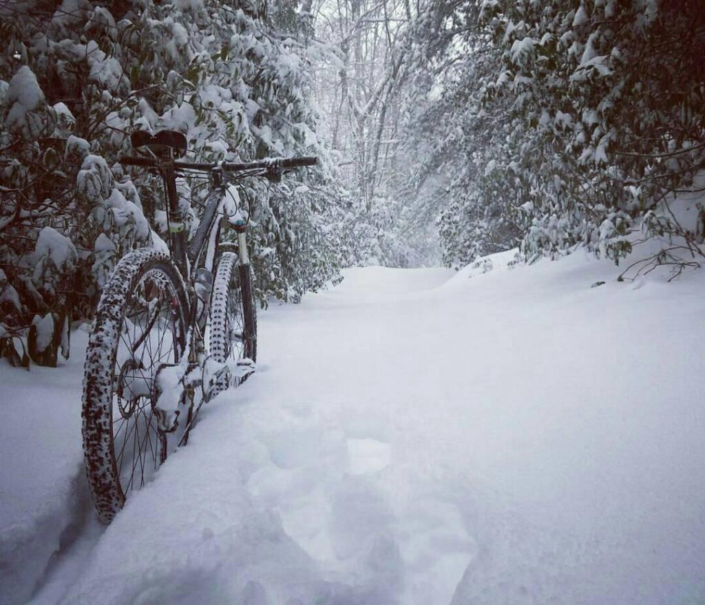 Pisgah Trail Conditions-uploadfromtaptalk1453560999877.jpg