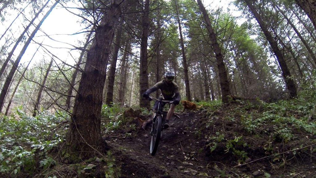 On One Bike pictures......-uploadfromtaptalk1454862224649.jpg
