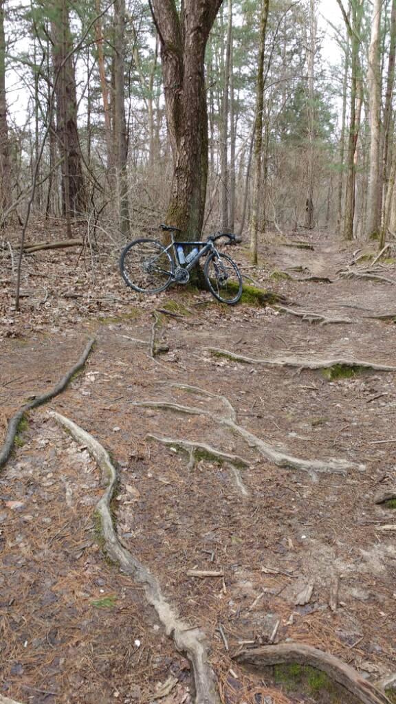 Cross Bikes on Singletrack - Post Your Photos-uploadfromtaptalk1459429824958.jpg
