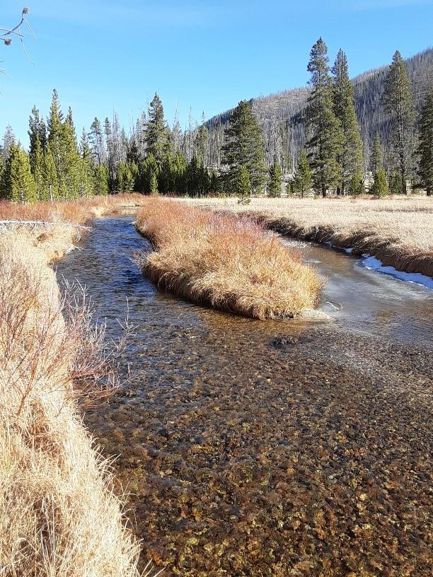 Stanley/Sawtooth/Whitecloud/SunValley Information Thread!-upper-valley-creek.jpg