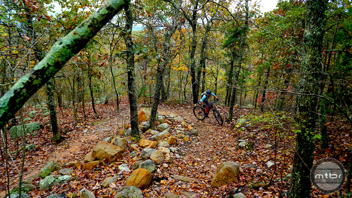 There is plenty of elevation at Cold Water Mountain, though most climbs are extremely extended, there is plenty of elevation gain and loss to use gravity to your advantage.
