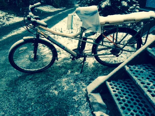 Post Pics of your Cargo Bike-ute-snow-32615.jpg