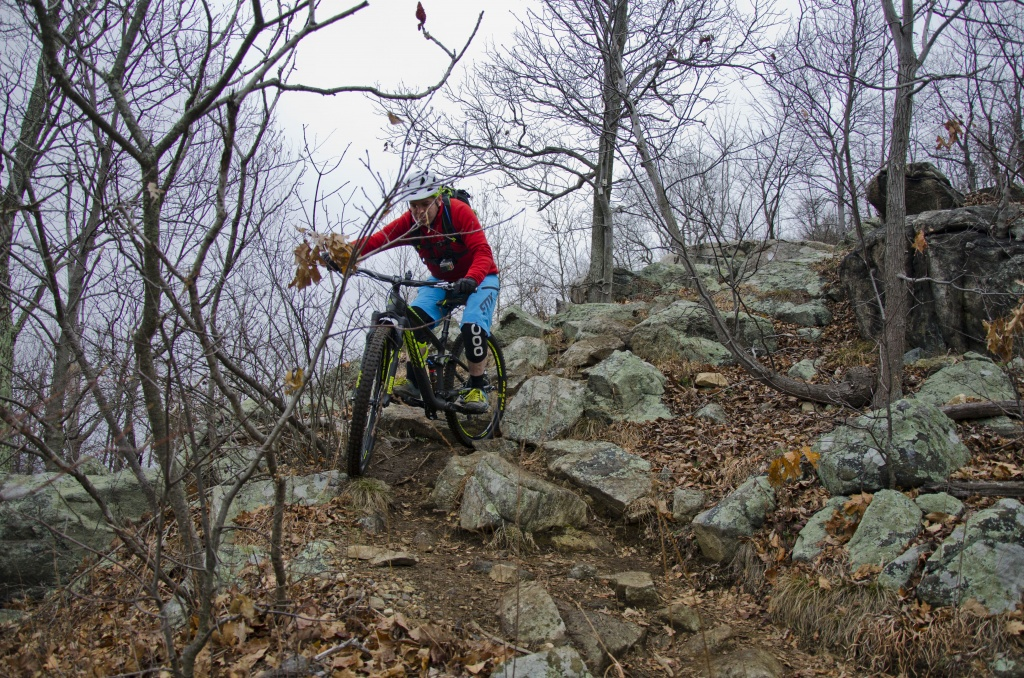 "29"" action shots.-van-slyke-trail.jpg"