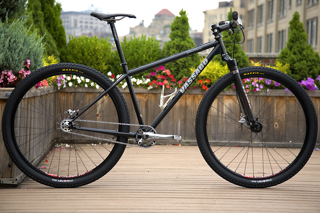 Rigid Vassago Jaberwocky 29er Singlespeed