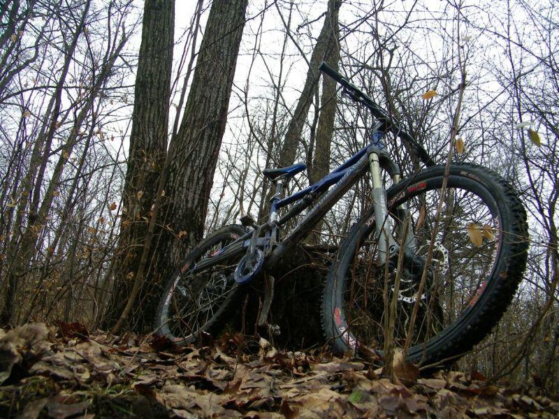 Monday Morning Ride-vcghj.jpg