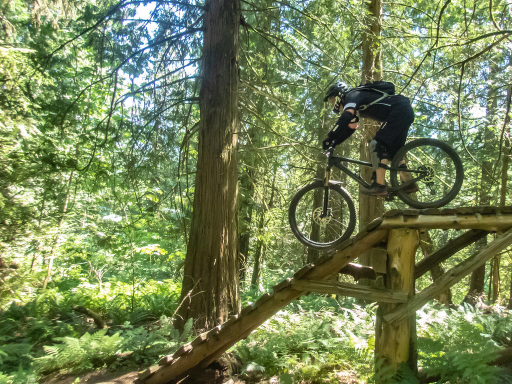 did you ride today?-vedder-july-14-2018-9.jpg
