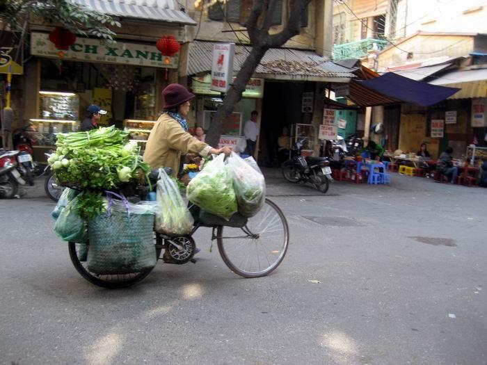 Veggie Vendor bike