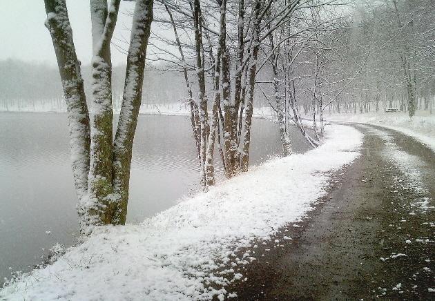 mOOn Lake... Ledge View/Lake View... new trails-vivitar-all-12-5-09-372.jpg
