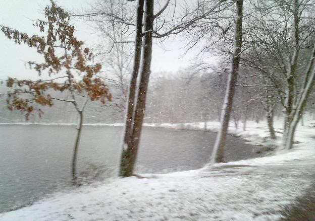 mOOn Lake... Ledge View/Lake View... new trails-vivitar-all-12-5-09-375.jpg