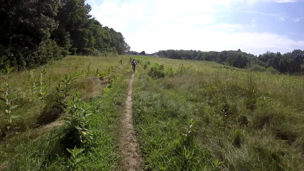 MA Trails Picture Thread-vlcsnap-2019-08-04-13h16m35s847.jpg
