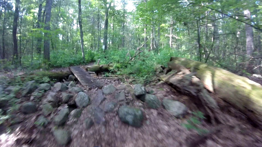MA Trails Picture Thread-vlcsnap-2019-08-04-13h24m20s544.jpg